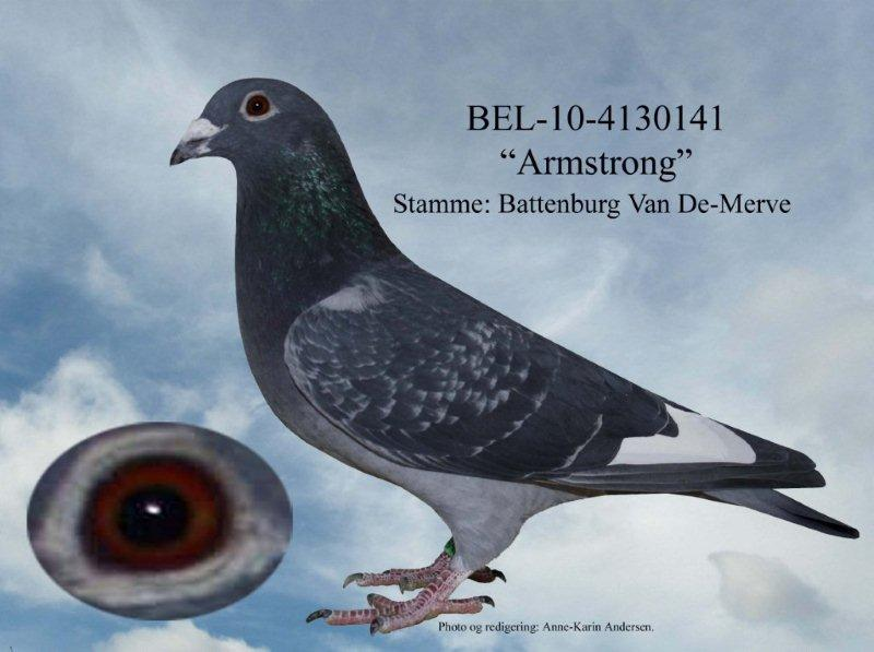 BEL-10-4130141