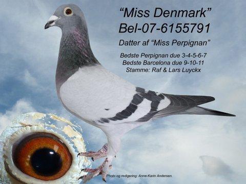 U-BEL-07-6155791